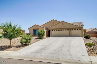 Tucson Single Family Home For Sale: 5046 W Willow Wind Way