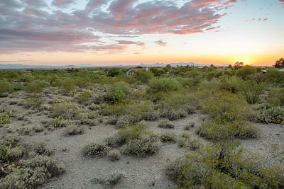 Residential Lots & Land For Sale: 11800 E Pantano Trail