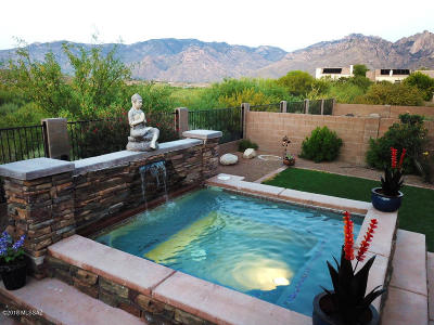 Oro Valley Single Family Home For Sale: 11975 N Labyrinth Drive