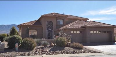 Tucson Single Family Home For Sale: 38289 S Skyline Drive