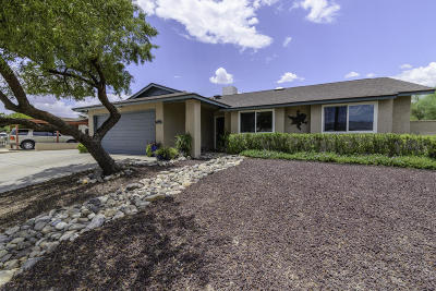 Tucson Single Family Home Active Contingent: 1364 S Lynx Drive