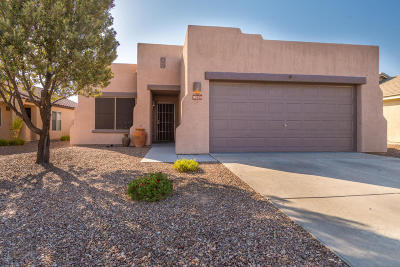 Tucson Single Family Home For Sale: 9054 N School Hill Drive
