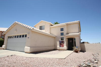 Tucson Single Family Home For Sale: 8755 N Biscay Place