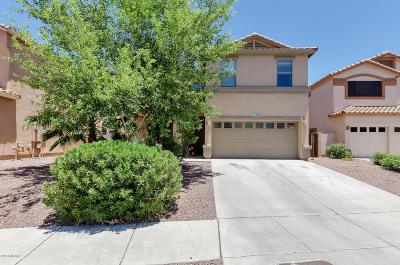 Sahuarita Single Family Home For Sale: 15407 S Camino Agua Azul