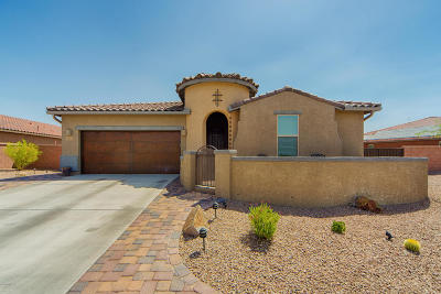 Sahuarita Single Family Home For Sale: 1417 E Lower Mine Lane