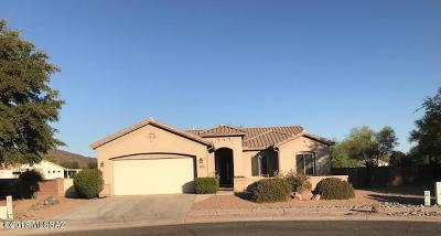 Tucson Single Family Home For Sale: 9721 N Sandy Mesa Place