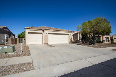 Tucson Single Family Home For Sale: 11557 N Flat Iron Drive
