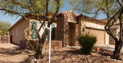 Oro Valley Single Family Home Active Contingent: 12841 N Salt Cedar Drive