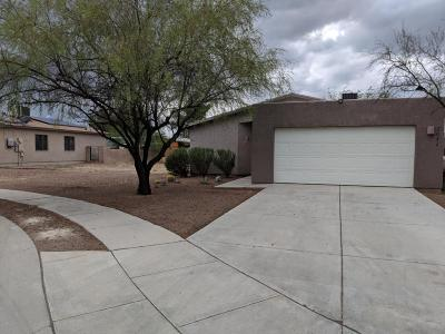 Tucson Single Family Home For Sale: 2042 E Cochise Vista