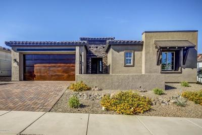Tucson Single Family Home For Sale: 10728 E Placita Reina Linda