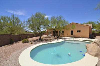 Oro Valley Single Family Home For Sale: 11365 N Via Rancho Naranjo