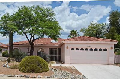 Saddlebrooke Single Family Home For Sale: 37491 S Desert Star Drive