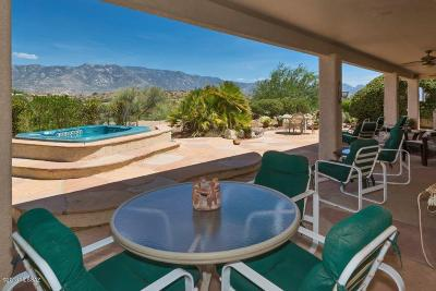 Tucson Single Family Home Active Contingent: 38225 S Skyline Drive