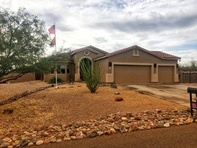 Vail Single Family Home For Sale: 1028 N Davidson Canyon Road