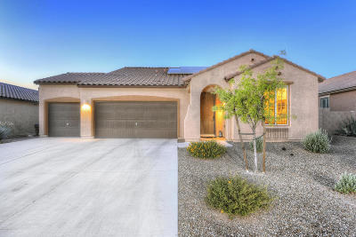 Marana Single Family Home Active Contingent: 12588 N Green Oak Drive