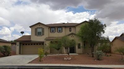 Single Family Home For Sale: 4813 W Calle Don Alberto
