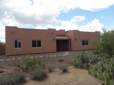Tucson Single Family Home For Sale: 12100 N Camino Del Fierro