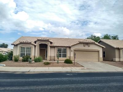Tucson Single Family Home For Sale: 7138 W Rivulet Drive