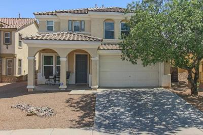 Sahuarita Single Family Home For Sale: 373 W Vuelta Friso