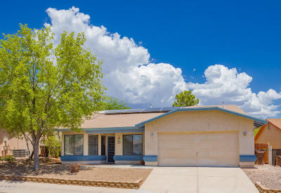 Tucson Single Family Home For Sale: 9640 N Gyor Place
