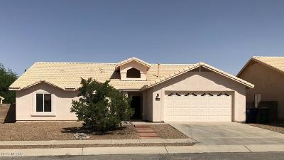 Single Family Home For Sale: 8064 S High Canyon Drive