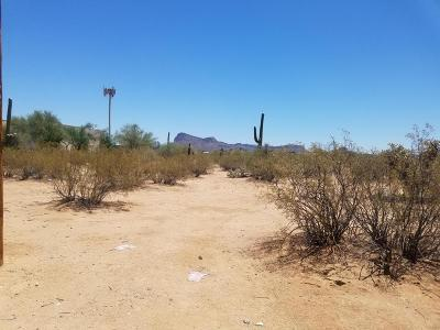 Tucson Residential Lots & Land For Sale: 6840 N Sandario Road