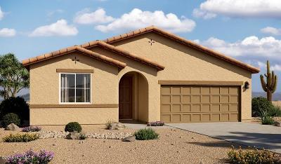 Tucson Single Family Home For Sale: 17394 S Nicholas Falls Drive
