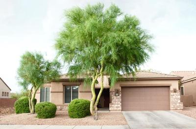 Tucson Single Family Home For Sale: 8592 N Moonfire Drive