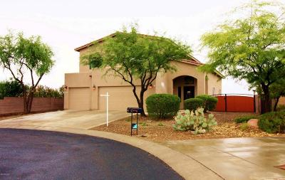 Tucson Single Family Home For Sale: 60549 E Twisted Snaffle Place