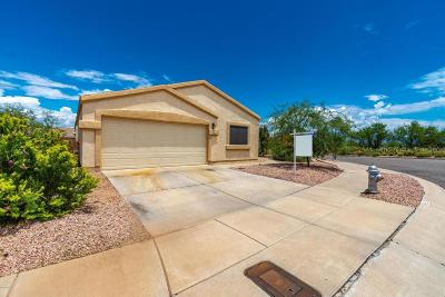 Single Family Home For Sale: 9491 E Bench Mark Loop