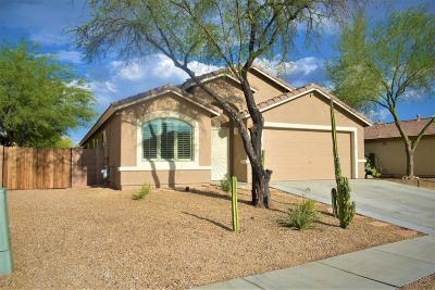 Tucson Single Family Home For Sale: 3619 S Desert Promenade Road