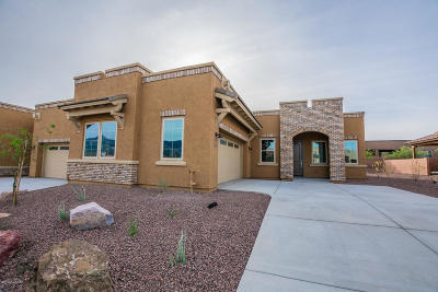 Oro Valley Townhouse For Sale: 13259 N Chiracahua Peak Drive