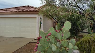 Oro Valley Single Family Home For Sale: 12373 N Brightridge Drive