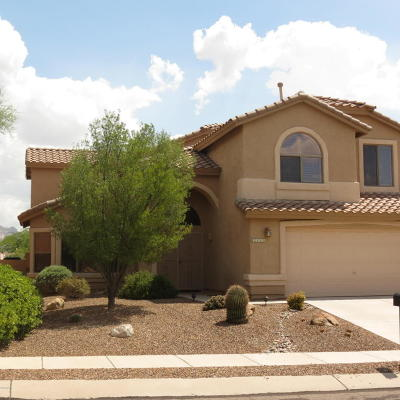 Oro Valley Single Family Home For Sale: 2210 E Bedrock Lane