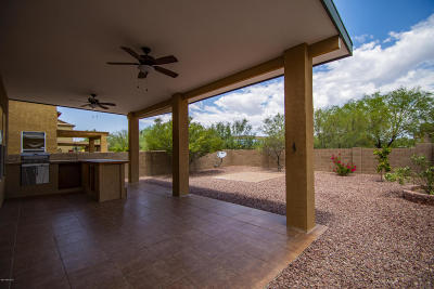 Tucson Single Family Home For Sale: 2850 W Duskywing Drive