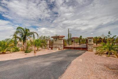 Pima County Single Family Home For Sale: 5220 W Spectacular Way