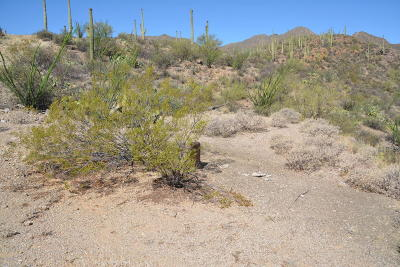 Tucson Residential Lots & Land For Sale: 6940 W Wasson Vista Drive