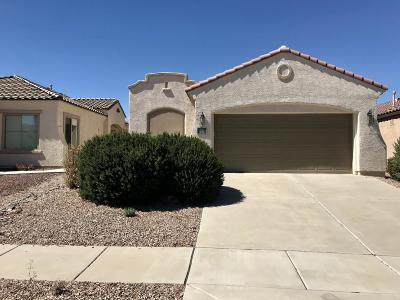 Sahuarita Single Family Home For Sale: 216 W Calle Media Luz