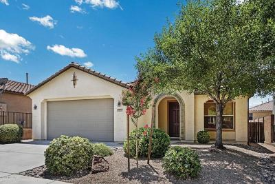 Vail Single Family Home For Sale: 17068 S Mesa Shadows Drive