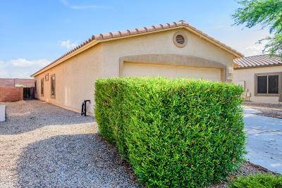 Single Family Home For Sale: 7431 E Fair Meadows Loop