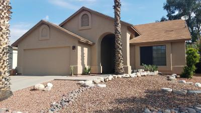 Tucson Single Family Home For Sale: 2670 W Camino Ebano
