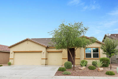 Sahuarita Single Family Home For Sale: 1021 E Wiley Squirrel Lane