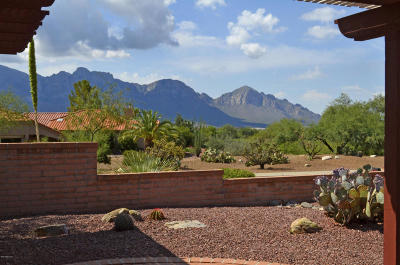 Oro Valley Single Family Home Active Contingent: 14171 N Cirrus Hill Drive