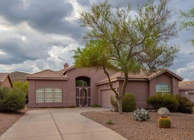 Tucson Single Family Home For Sale: 708 S Deer Bend Court