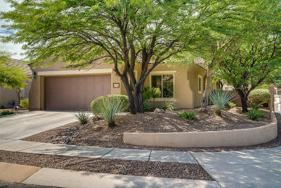 Sahuarita Single Family Home For Sale: 543 W Calle Sedillo