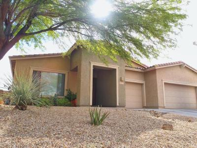 Tucson Single Family Home For Sale: 8487 N Ironwood Reserve Way