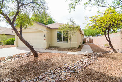 Single Family Home For Sale: 7818 S Orchid Vine Place