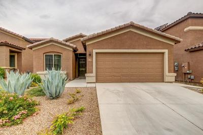 Tucson Single Family Home For Sale: 7336 E Heartwood Drive