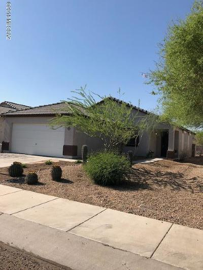 Tucson Single Family Home For Sale: 2423 W Rousseau Street