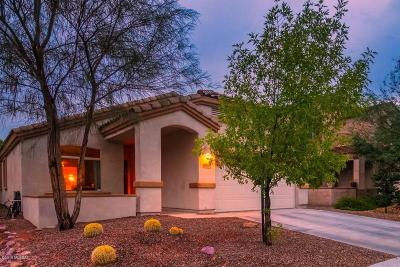 Oro Valley Single Family Home For Sale: 1264 W Molinetto Drive